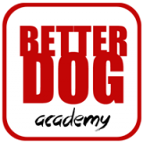 <h5>Better Dog Academy</h5>